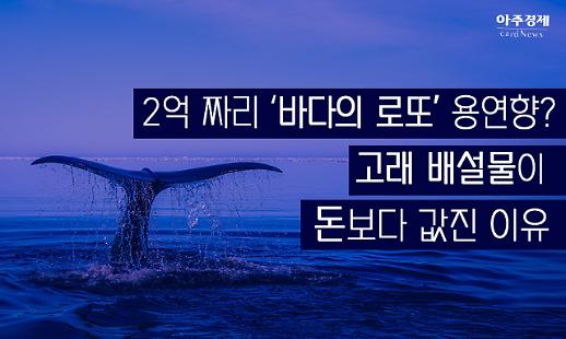 2억짜리 바다의 로또 용연향? 고래 배설물이 돈보다 값진 이유[카드뉴스]