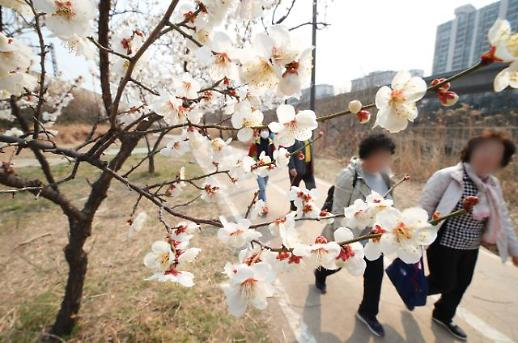 [날씨] 내일 아침 꽃샘추위···미세먼지 없는 맑은 하늘