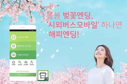 한국스마트카드, '시외버스모바일' 벚꽃 이벤트 진행