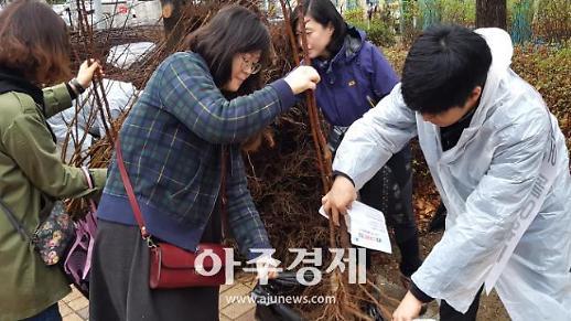 용인시 식목일 각 구청에서 나무를 나눠드립니다