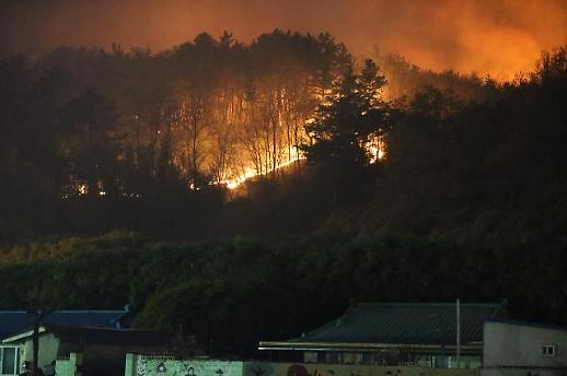 [포토] 주택가 위협하는 포항 산불