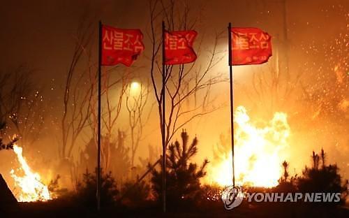 고성 산불, 8군단 장병 2500명 대피... 진화 작업 투입 예정
