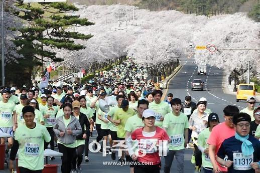 경주벚꽃마라톤, 1만3000여 명 참가...성료