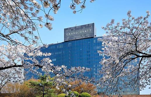 [주말&호캉스]벚꽃놀이도 즐기고 호캉스도 하고 1석2조 주말여행