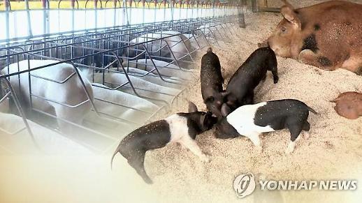 [특징주] 아프리카돼지열병 차단 대북 협력 방침에 사료株 강세