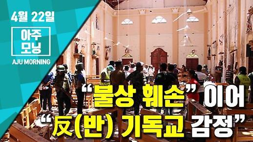 """[영상] """"反(반) 기독교 감정"""" """"불상 훼손"""" NTJ 자살폭탄 테러 가능성 [아주모닝]"""