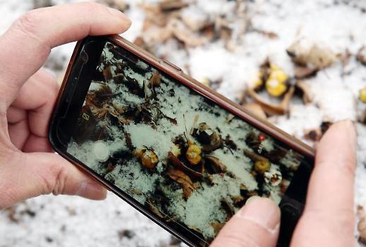 여가부, 인터넷·스마트폰 중독 끊는다...가족치유캠프 참가자 모집