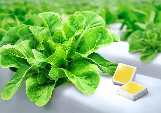 삼성전자, 식물 생장용 백색 LED 최고 효율 달성