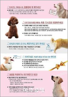 경기도 매월 마지막주 수요일 동물보호 캠페인 및 동물등록제 단속 실시