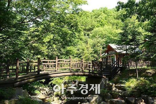 용인시, 백암면에 체류형 관광단지 'Farm & Forest 타운' 조성