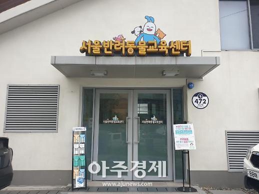 [르포] 반려동물 1000만 시대 대비한다...서울시-동물보호단체 카라 콜라보 교육현장 가보니