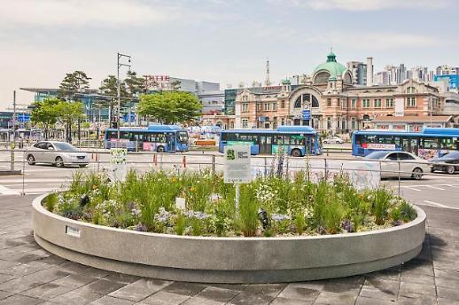 클로란, 서울시와 협약 맺은 보타니 포 체인지 식물정원 수상작 정원 선봬