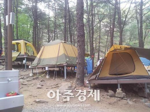 올 여름, 캠핑 편의성 높여줄 '핫 아이템 4종'