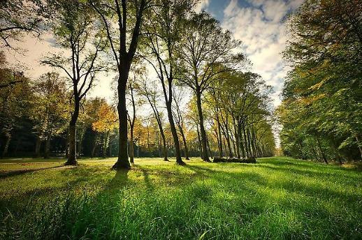 인천시,장기미집행공원 체계적 조성계획 수립