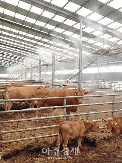 서천군농업기술센터, 축사 내 농업미생물 안개분무 시설활용