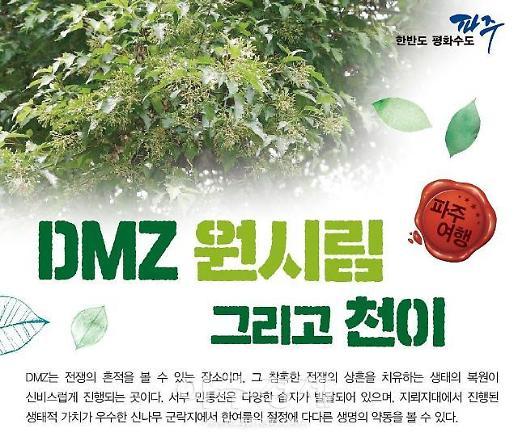 파주시,  DMZ 원시림 속으로 떠나보자 DMZ평화생태여행