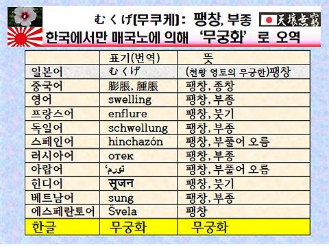 [강효백의 新경세유표 12-19] 무쿠케(むくげ)= '팽창'이란 뜻, 한국만 '무궁화'로 오역
