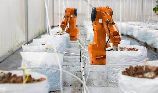 중국의 식량기지 헤이룽장성에 알리바바 기술이 결합된다