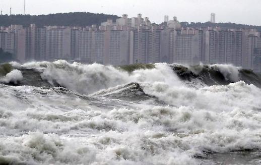 13호 태풍 링링 피해 어업인 위한 긴급 금융지원반 운영
