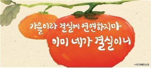 가을이라 결실에 연연하지 마. 이미 네가 결실이니…서울꿈새김판 새단장
