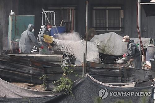 경기도 돼지 몰살 위기…최대 축산단지 포천 뚫리나