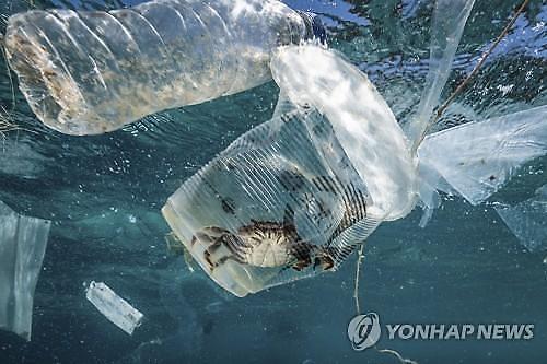 플라스틱을 먹을수 있다고?...생분해성 플라스틱 어디까지 왔나