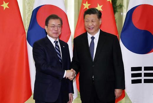 시진핑 만난 文 대통령, 中 역할론 주문…북·미 대화 중단, 北에도 이롭지 않다