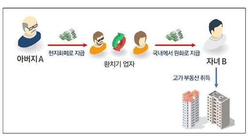 부동산 탈루 30대 이하 정조준…세무조사 361명 중 70% 육박