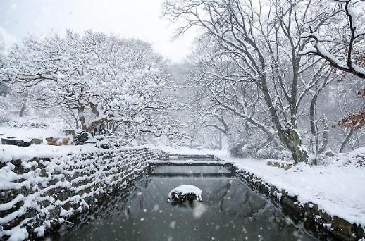 [광화문갤러리] 마지막 세 과시하는 겨울 전국의 설경