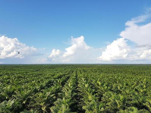 포스코인터, 국내기업 최초 팜사업 환경사회정책 선언
