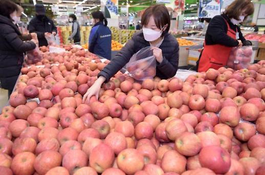 농협유통, 11일까지 사과 한가득 골라담기 행사