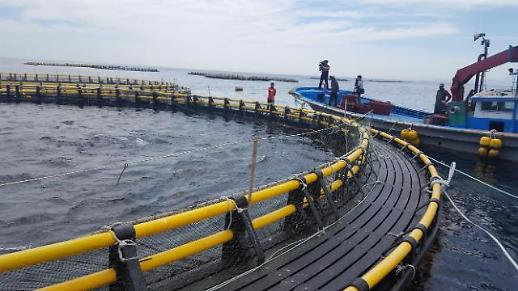 스마트 양식장 해수부, 수산 ICT 융합 지원사업 4개 선정