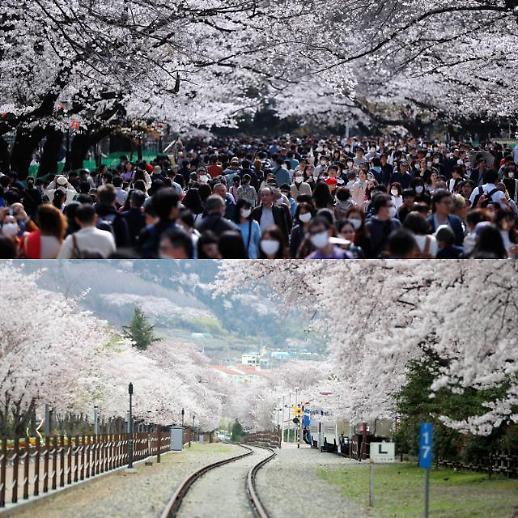 [광화문갤러리] 이웃한 한국과 일본, 코로나 대응은 극과 극