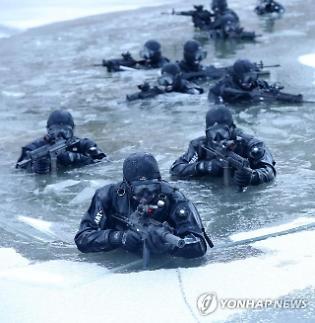 민간인에 뚫린 제주 해군기지에 해병대 이어 육군 특전사 투입 검토
