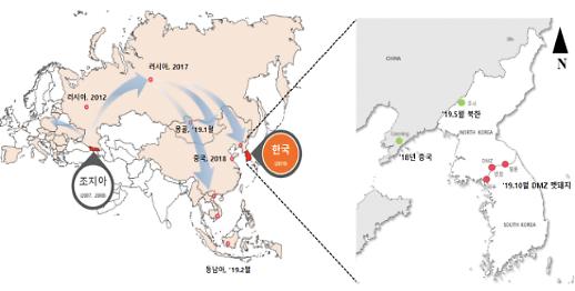 접경지역 멧돼지 ASF 바이러스, 러·중서 북한 거쳐 유입