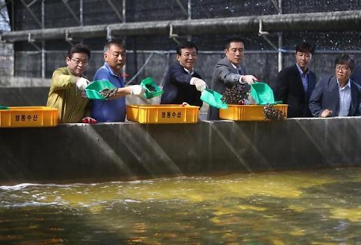 해양수산 창업 이제 온라인으로 준비하세요