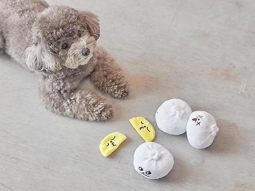 Người dân Hàn Quốc ngày càng chi nhiều tiền mua sắm đồ cho thú cưng