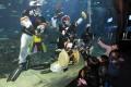 水族馆上演水底传统音乐会