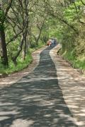 ★<7月推荐旅游线路②>热情豪放·自然清新的新万金野营公园