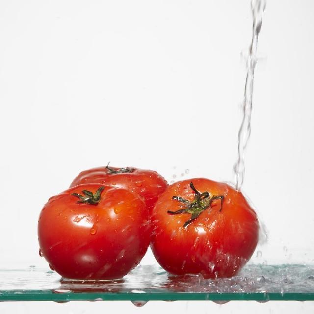 每天一杯番茄汁有助预防乳房癌