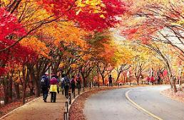 올가을 기상 전망, 9월 평년보다 더워 ..가을여행 10월이 적기
