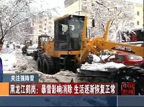 [영상중국] 중국 헤이룽장, 가을인데 눈이 펄펄...3년 만에 가을 폭설