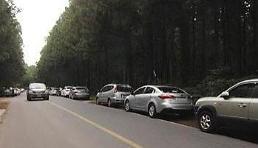 사려니 숲길 교통사고 우려…셔틀버스 시범운영