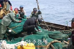 경북도, 봄철 민관합동 불법어업 일제단속 실시