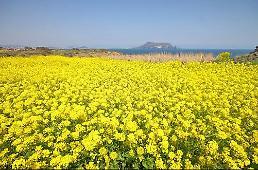 .外国游客济州岛逗留时间仅三天 开发景点扩充基建成课题.