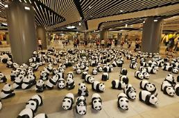 .避雨中的1800只纸熊猫.