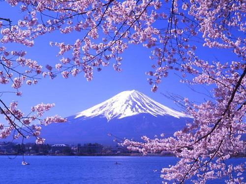 韩评选2015年最受欢迎旅行地  日本三城市入围前十