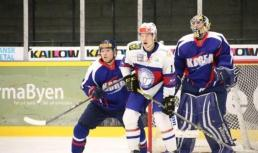 Two Canadian-born ice hockey players join South Korean national team