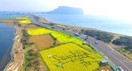 .济州岛房地产吸引外资金额5年首降 中资大幅减少.