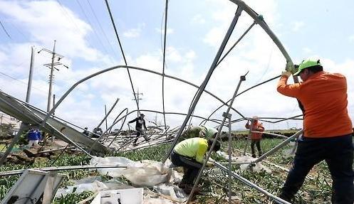 台风级强风暴雨席卷济州岛 致游客居民寸步难行